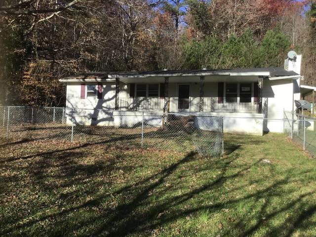 584 Lower Hatcher Creek Rd, Stanton, KY 40380 (MLS #20023876) :: Nick Ratliff Realty Team