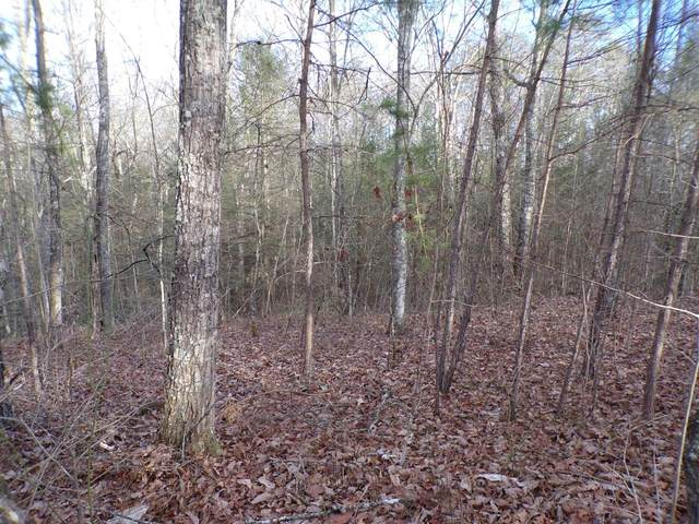 4200 Forest Service Rd A, London, KY 40741 (MLS #20025317) :: Nick Ratliff Realty Team
