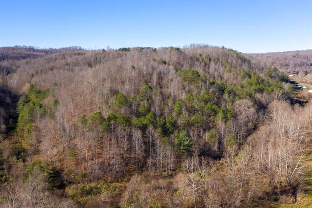 0-00 Pope Hollow, Grayson, KY 41143 (MLS #20025795) :: Nick Ratliff Realty Team