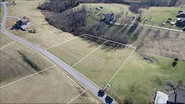 31 Ridgeview Drive, Lancaster, KY 40444 (MLS #20102636) :: Vanessa Vale Team