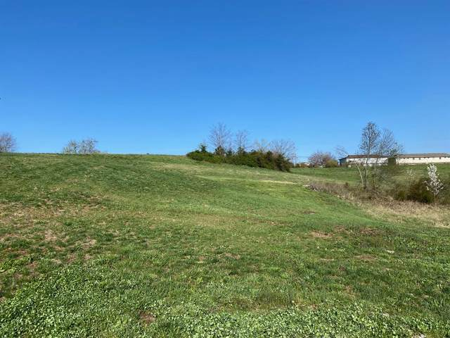 232 Iva Drive, Richmond, KY 40475 (MLS #20105715) :: Better Homes and Garden Cypress