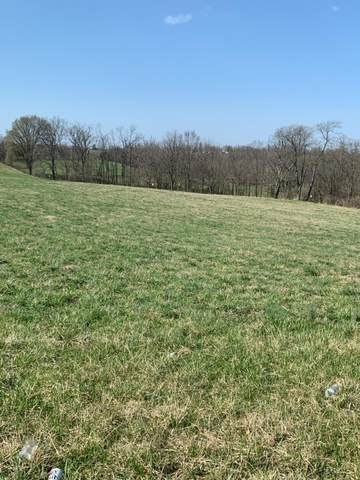 20-LOT Serenity Court, Cynthiana, KY 41031 (MLS #20106659) :: Better Homes and Garden Cypress