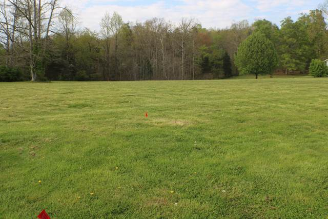 Lot 5 Katie Dr, Clay City, KY 40312 (MLS #20107061) :: Nick Ratliff Realty Team