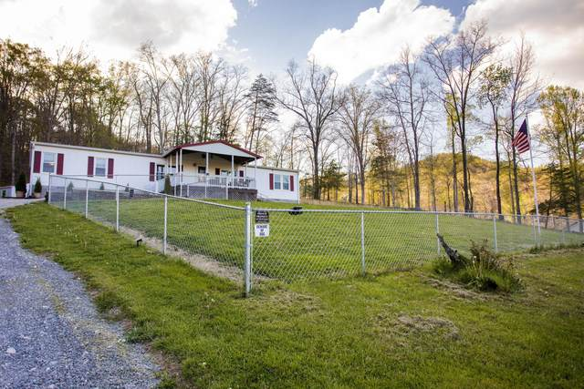 630 Cat Creek Road, Stanton, KY 40380 (MLS #20107265) :: Nick Ratliff Realty Team