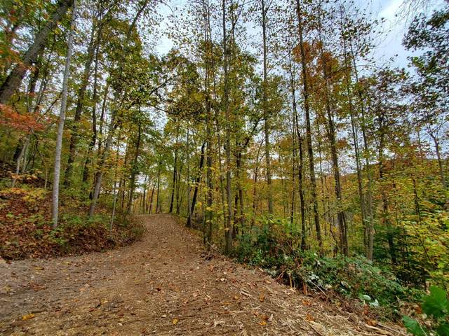 2 Indian Creek Road, Hillsboro, KY 41049 (MLS #20107651) :: Nick Ratliff Realty Team