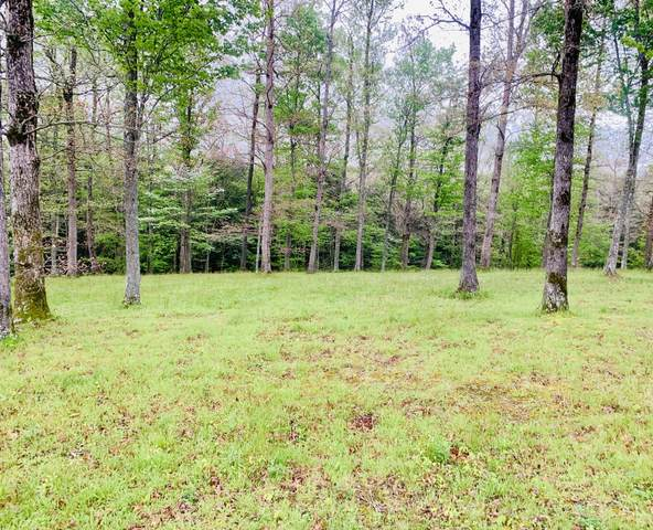 0000 Canyon Drive, London, KY 40741 (MLS #20108414) :: Nick Ratliff Realty Team