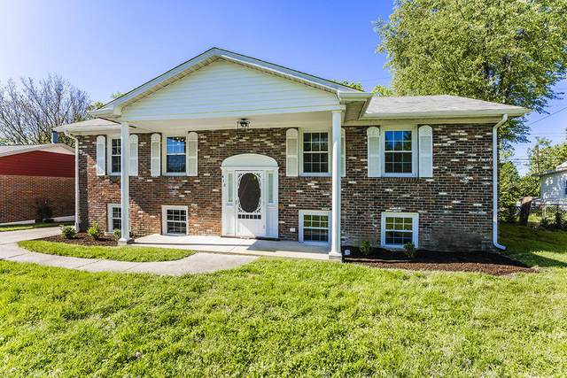 412 Edgewood Drive Drive, Nicholasville, KY 40356 (MLS #20108917) :: Better Homes and Garden Cypress