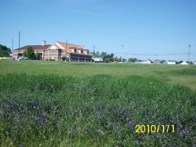 5 Star Court, Nicholasville, KY 40356 (MLS #20109761) :: Vanessa Vale Team