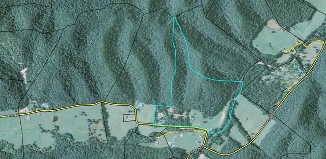 96 Tar Fork Rd, Vanceburg, KY 41179 (MLS #20111523) :: Nick Ratliff Realty Team