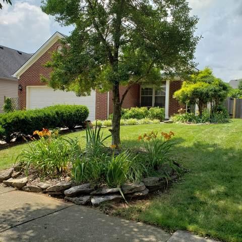 189 Angel Falls Drive, Lexington, KY 40511 (MLS #20113814) :: Nick Ratliff Realty Team