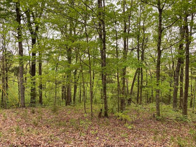 40 Blevins Ridge Rd, Monticello, KY 42633 (MLS #20115821) :: Nick Ratliff Realty Team