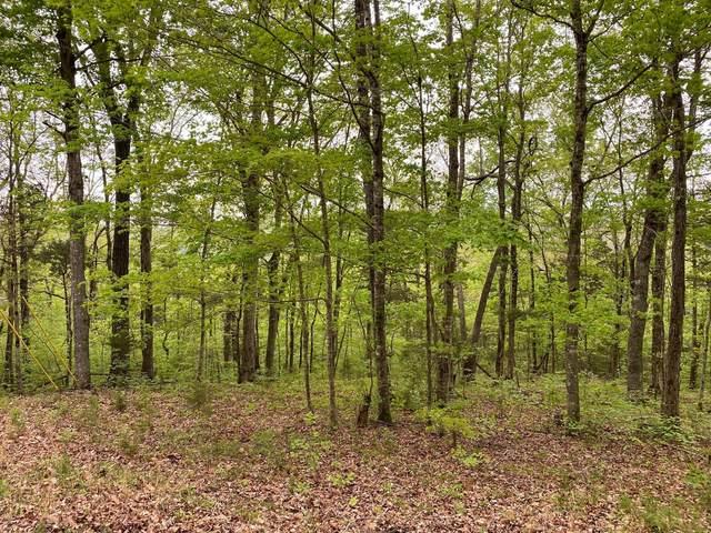 41 Blevins Ridge Rd, Monticello, KY 42633 (MLS #20115823) :: Nick Ratliff Realty Team