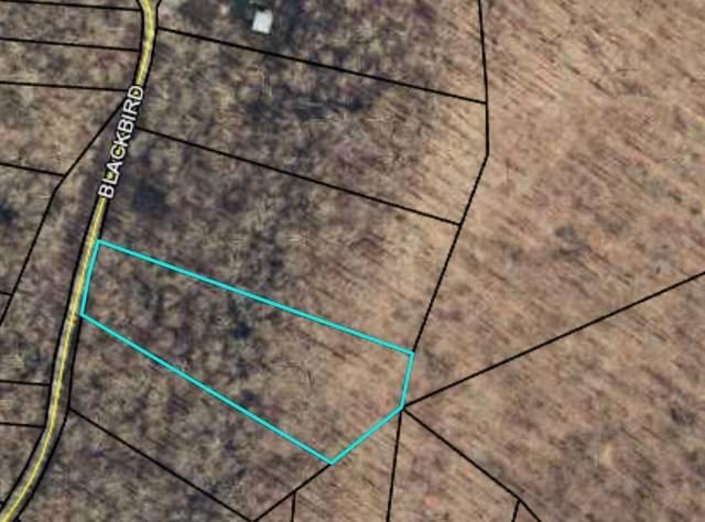 134 Blackbird Drive, Somerset, KY 42501 (MLS #20117277) :: Robin Jones Group