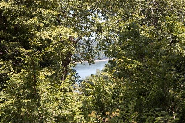 57 Cumberland Shores, Monticello, KY 42633 (MLS #20117307) :: The Lane Team