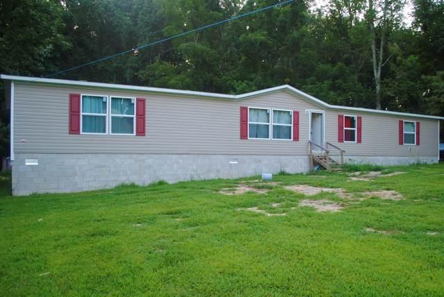 11707 1247 Highway, Waynesburg, KY 40489 (MLS #20118211) :: Nick Ratliff Realty Team