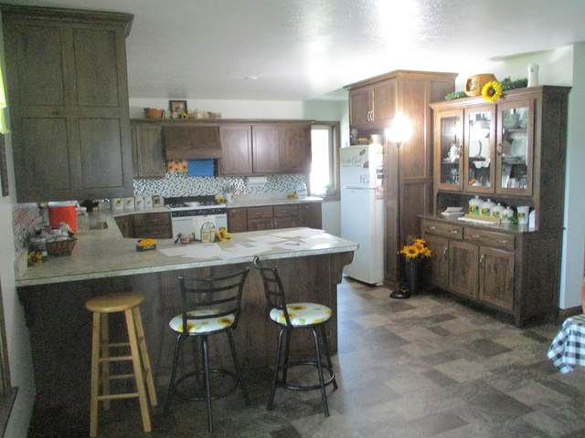 6434 Helena Road, Mayslick, KY 41055 (MLS #20118699) :: Nick Ratliff Realty Team