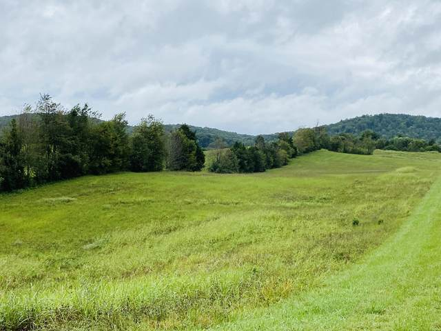 16 Lighthouse Estates, Monticello, KY 42633 (MLS #20118736) :: Robin Jones Group