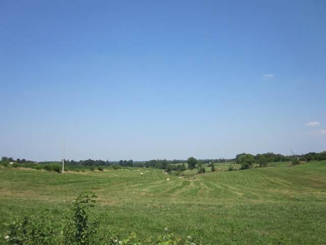 Parcel 1 Benton Road, Winchester, KY 40391 (MLS #20119108) :: Robin Jones Group