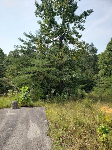 Lot 28 Brittany Drive, Monticello, KY 42633 (MLS #20119935) :: The Lane Team