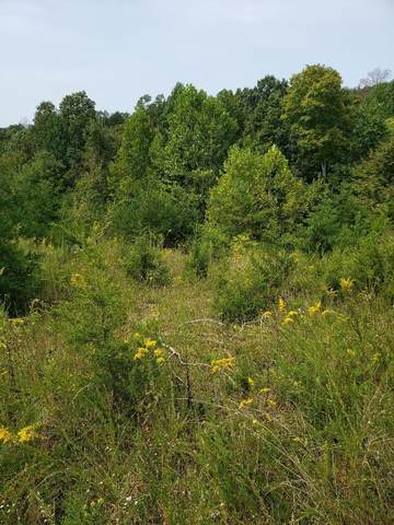 Lot 31 Brittany Drive, Monticello, KY 42633 (MLS #20119949) :: The Lane Team