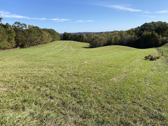 320 Flannery Hollow Road, Annville, KY 40402 (MLS #20120099) :: Nick Ratliff Realty Team