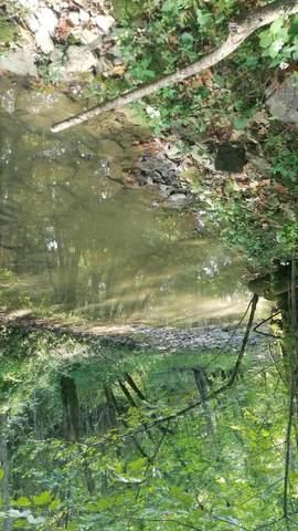1 Abners Mill Road, Carlisle, KY 40311 (MLS #20120326) :: Nick Ratliff Realty Team
