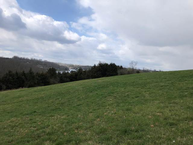 205 Summer Drive, Williamstown, KY 41097 (MLS #20120728) :: The Lane Team