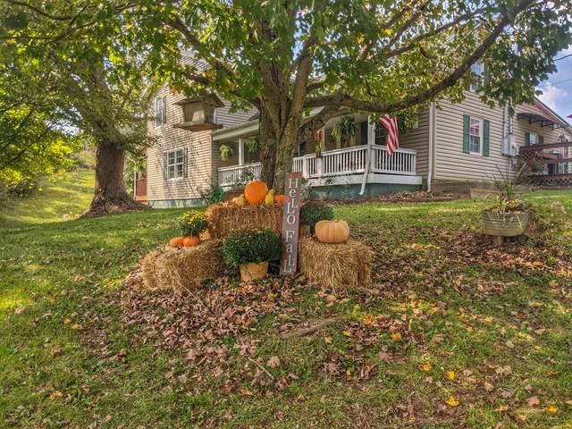 1541 Hammonds Creek Road, Lawrenceburg, KY 40342 (MLS #20121949) :: Nick Ratliff Realty Team