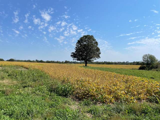 4274 Colby Road, Winchester, KY 40391 (MLS #20122439) :: Better Homes and Garden Cypress