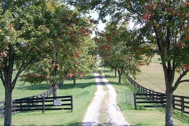 6896 Mccowans Ferry Road, Versailles, KY 40383 (MLS #20122776) :: Nick Ratliff Realty Team