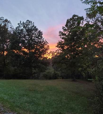 58 Hickory Point Drive, Monticello, KY 42633 (MLS #20122778) :: Vanessa Vale Team