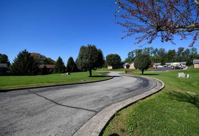 1 Briarwood Drive, Mt Sterling, KY 40353 (MLS #20122891) :: Vanessa Vale Team