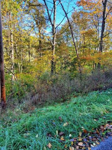 9999 Fishermans Cove Road, Marydell, KY 40741 (MLS #20123338) :: The Lane Team