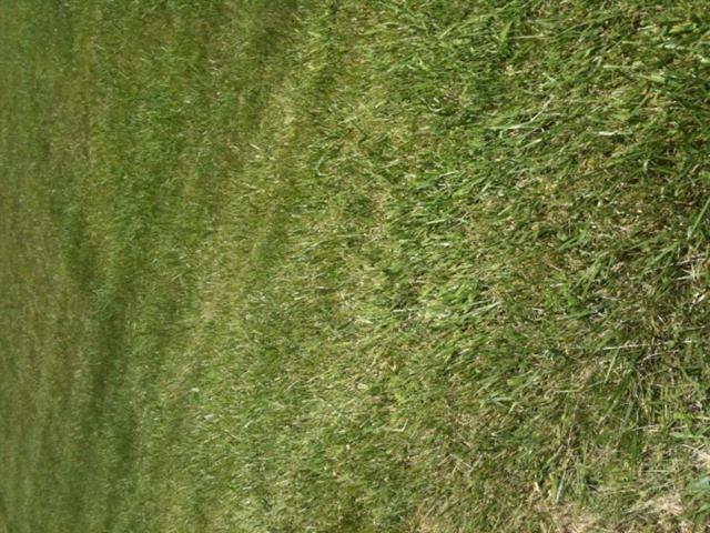 200 River Run Lot 68, Lancaster, KY 40444 (MLS #1505300) :: Nick Ratliff Realty Team