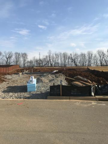 106 Buchanan Crossing, Georgetown, KY 40324 (MLS #1724891) :: Nick Ratliff Realty Team