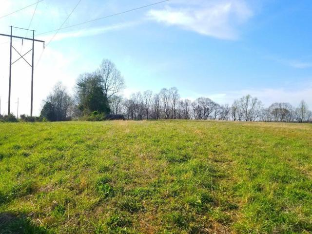 1040 Wolf Creek Road, Russell Springs, KY 42544 (MLS #1805999) :: Nick Ratliff Realty Team