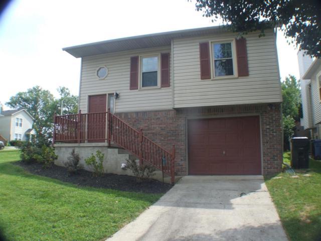 340 Chase Place, Lexington, KY 40503 (MLS #1817847) :: Gentry-Jackson & Associates