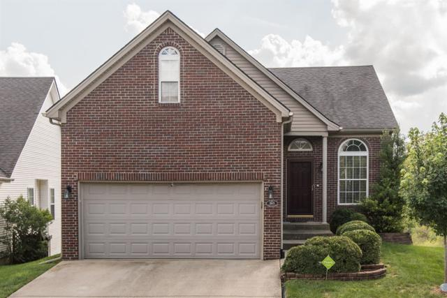 265 Long Branch Lane, Lexington, KY 40511 (MLS #1820631) :: Nick Ratliff Realty Team