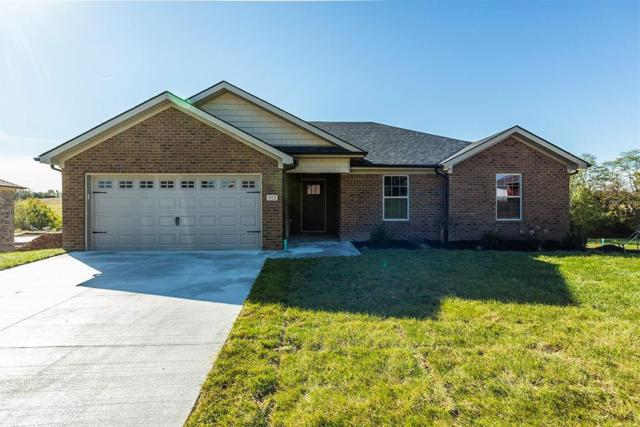 312 Southern Aster Trail, Richmond, KY 40475 (MLS #1824815) :: Nick Ratliff Realty Team