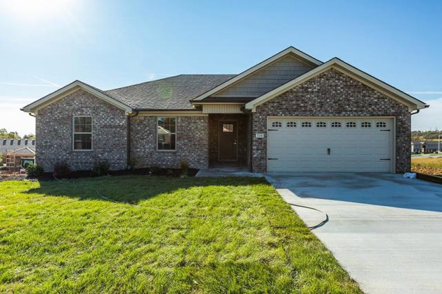 316 Southern Aster Trail, Richmond, KY 40475 (MLS #1824819) :: Nick Ratliff Realty Team