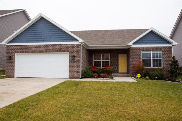 171 Ash Rapids Court, Lexington, KY 40511 (MLS #1901268) :: Sarahsold Inc.