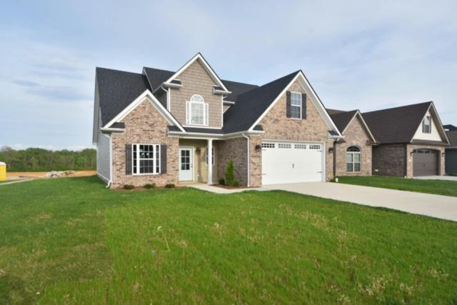 1036 Squirrel Nest Lane, Lexington, KY 40509 (MLS #1909360) :: The Lane Team