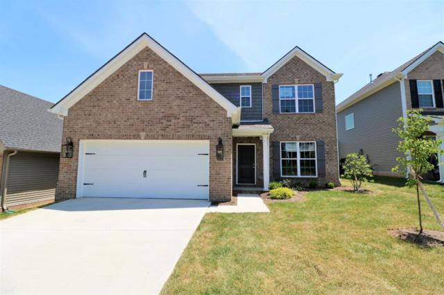 4666 Rosette Way, Lexington, KY 40514 (MLS #1909775) :: Nick Ratliff Realty Team