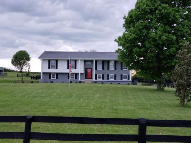 175 Haggin Lane, Versailles, KY 40383 (MLS #1910344) :: Nick Ratliff Realty Team