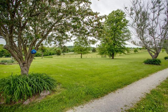 490 Arrowhead Springs Lane, Versailles, KY 40383 (MLS #1910826) :: The Lane Team