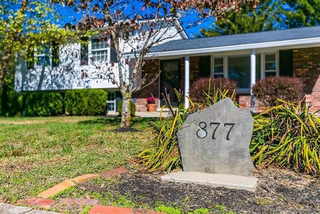 877 Summerville Drive, Lexington, KY 40504 (MLS #1924954) :: Nick Ratliff Realty Team