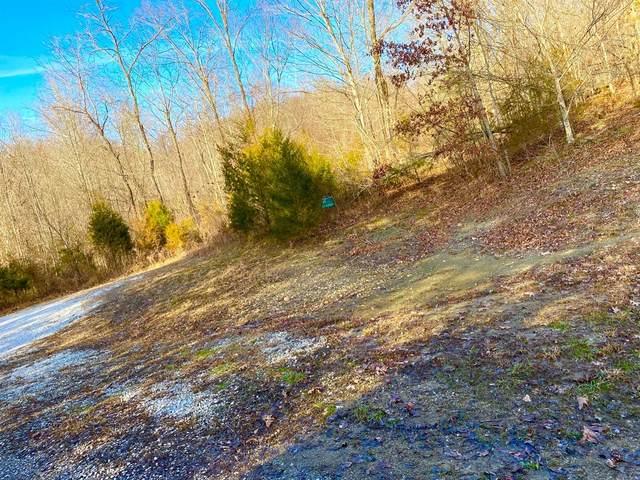 1000 Owens Branch Rd., Dunnville, KY 42528 (MLS #1927593) :: Nick Ratliff Realty Team