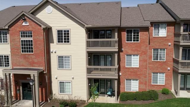 600 Vincent Way, Lexington, KY 40503 (MLS #20006698) :: The Lane Team