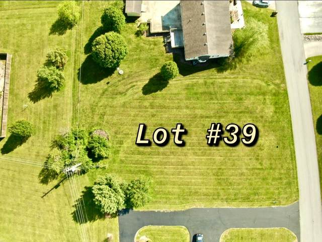 434 Springview Drive, Stanford, KY 40484 (MLS #20009381) :: Nick Ratliff Realty Team