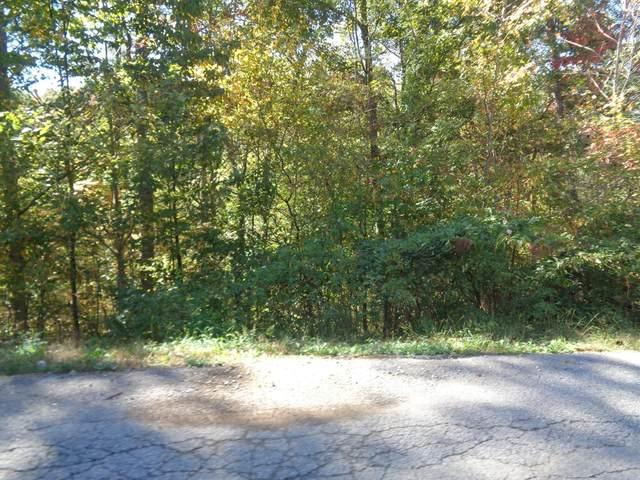 740 Wood View Drive, East Bernstadt, KY 40729 (MLS #20017542) :: Nick Ratliff Realty Team